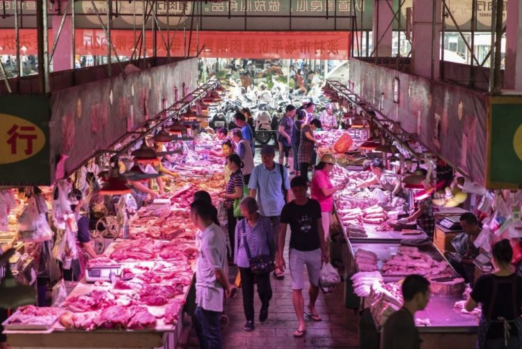A traditional Chinese wet market regularly sells an array of foods and meats. Pictured is a market in Guangxi's capital Nanning.