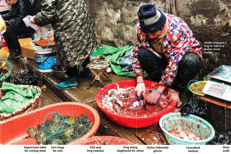 Wuhan's Wet Market
